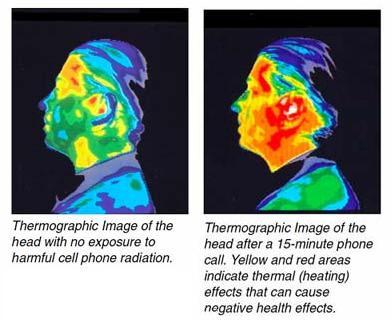 termografia afectación móvil