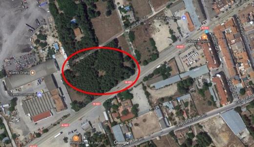 Bosque misterioso Albacete por Joan Carles lópez