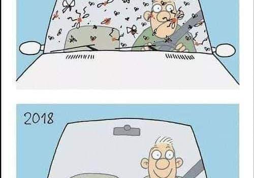 La muerte de insectos es muy preocupante, las antenas de telefonía moviles y radares, tienen mucho que ver